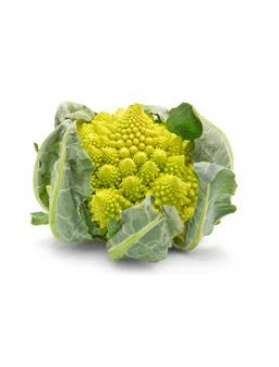 Broccolo Romanesco 1 - 1,2 Kg circa